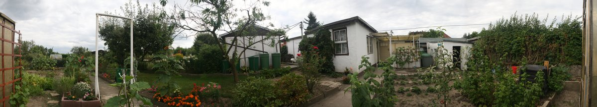 Panorama-Bild des Gartens